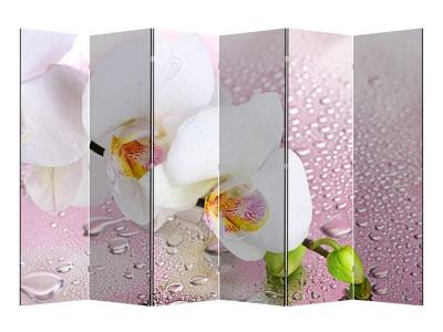 Ширма 1101-6 Орхидея 6 панелей