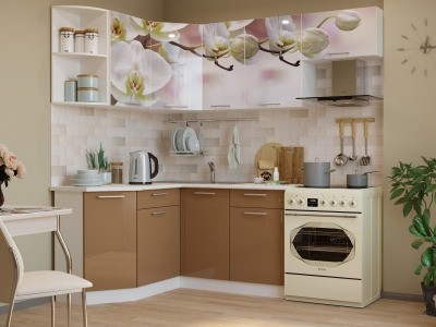 Кухонный гарнитур угловой Риал 1400х2100 фото #1124180534